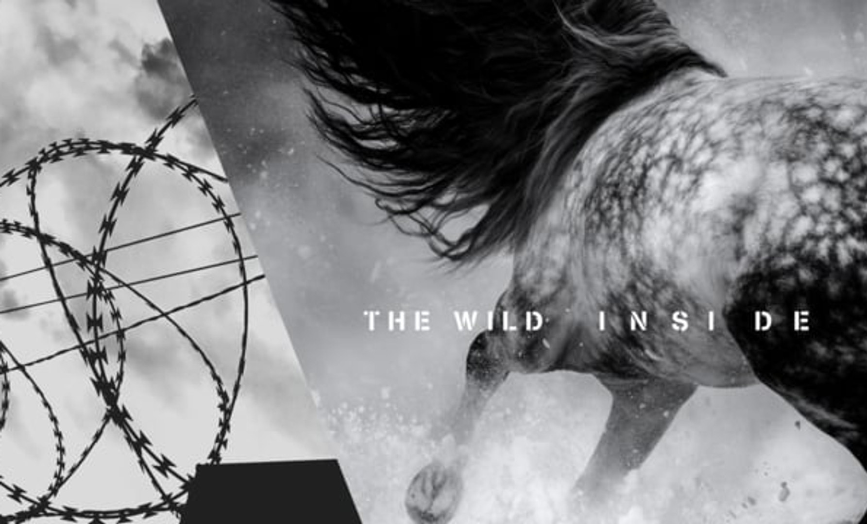 The Wild Inside (2018)