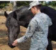 Horses Helping Heroes