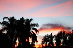 sunset cb dec.