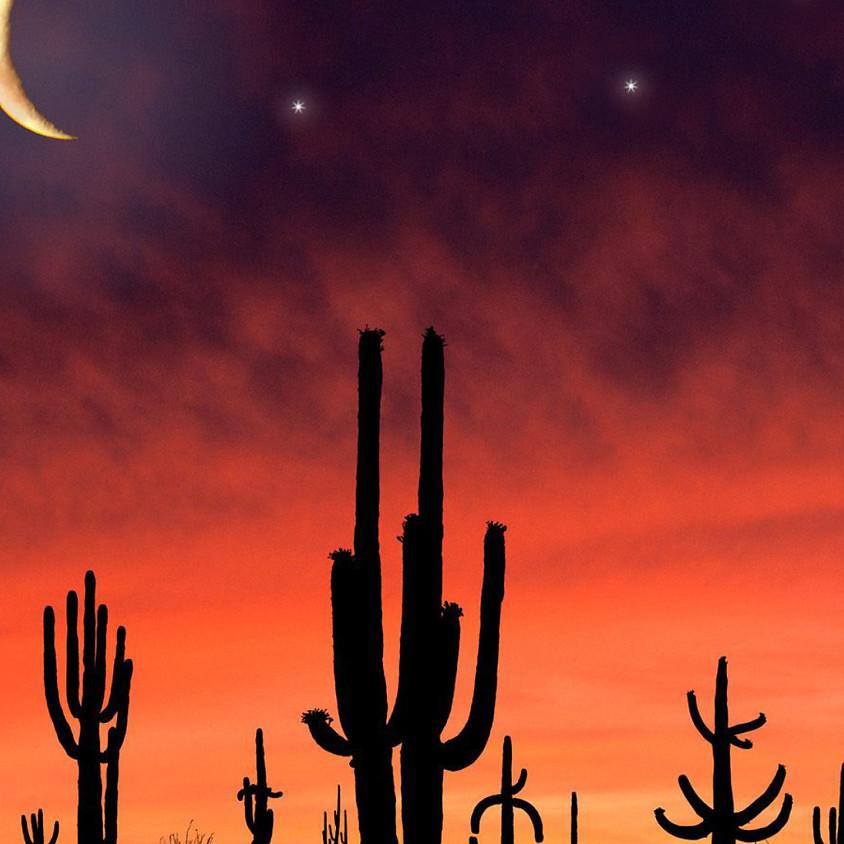 Summer Social Series - Desert Nights
