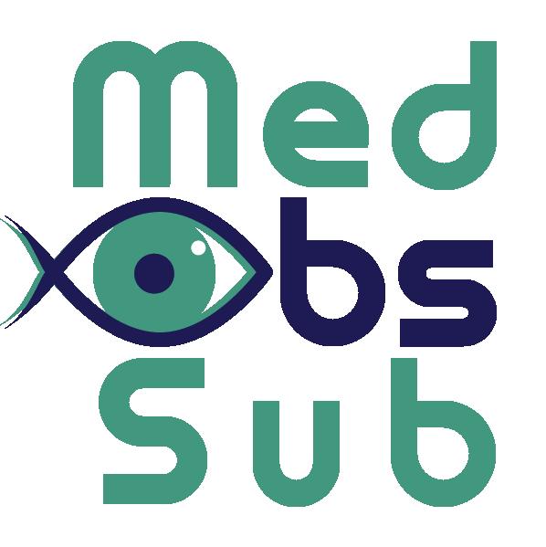 MedObs-Sub -  Logo (blanc)