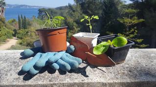 Rejoignez l'équipe de l'Atelier bleu samedi 29 avril au vide jardin organisé par le Centre Communal