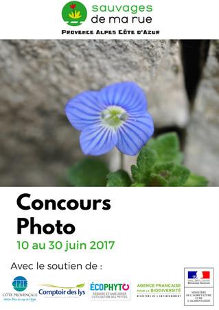 """Concours photo """"La Biodiversité en ville"""""""