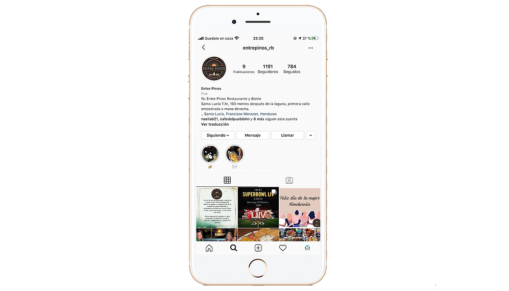 mockup iphone instagram ENTRE PINOS.png