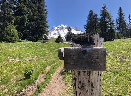 Optimal hydration on the trail