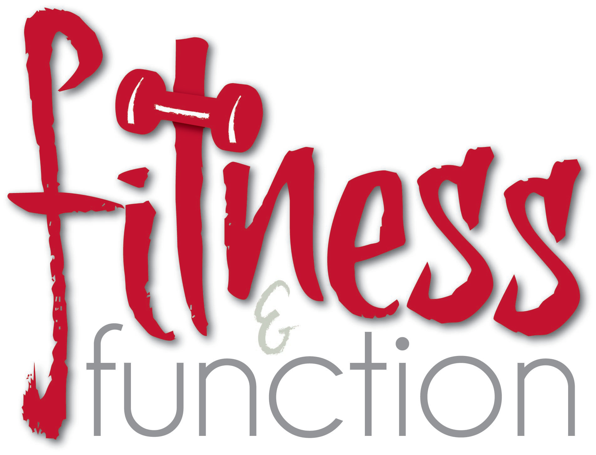 Fitness Function In Home Personal Trainer Fitnessandfunction