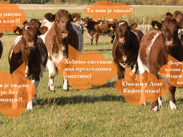 Одржан протест бикова и крава у Калафатима (извештава Драган Љељен)