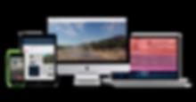 nexmii UI/UX Webdesign and branding for language learning startup