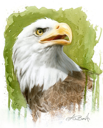 """Eagle 2, 16""""x20"""""""