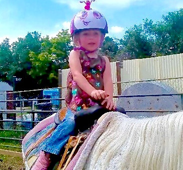 The perfect kid's horse