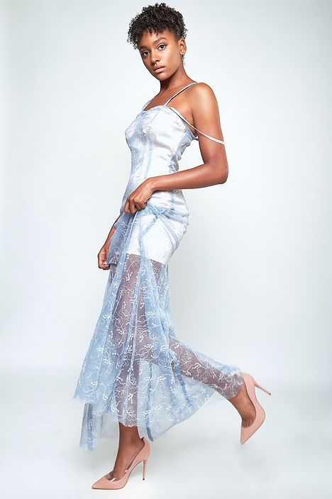 Hollywood Princess Shailyn Pierre-Dixson Tulle See-throu dress emblishment lace slip dress