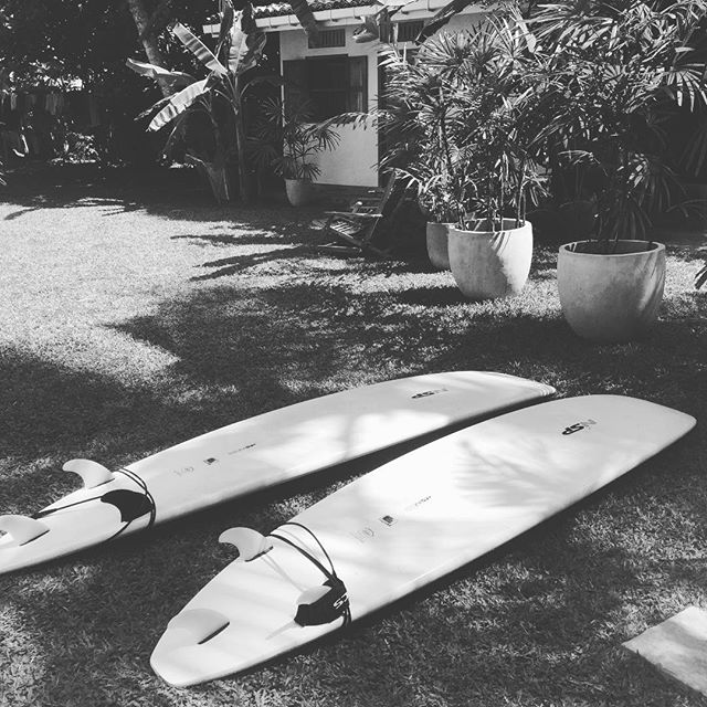 Last surf with _sunshinestories this morning