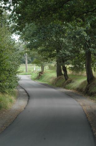Groene omgeving en wegen