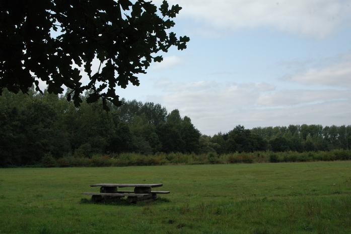 Picknickgelegenheid in de bossen rondom de Guesthouse
