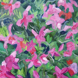 Azalea Oil on canvas mounted on board, 30cm x 30cm, Nicki Rolls, £100 (all proceeds - £100 - will go to Trussel Trust food bank charity) All my works are available for viewing prior to purchase - feel free to email.