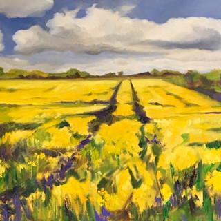 Golden Field £750
