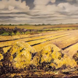 Wheat Field Lynsey Storer  Wheat Field  Oil on canvas  60 x 60 cm  £750