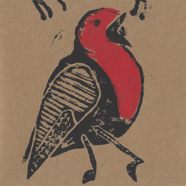 Hand printed cards by Nicki Rolls £2 each Pack of 3 £5