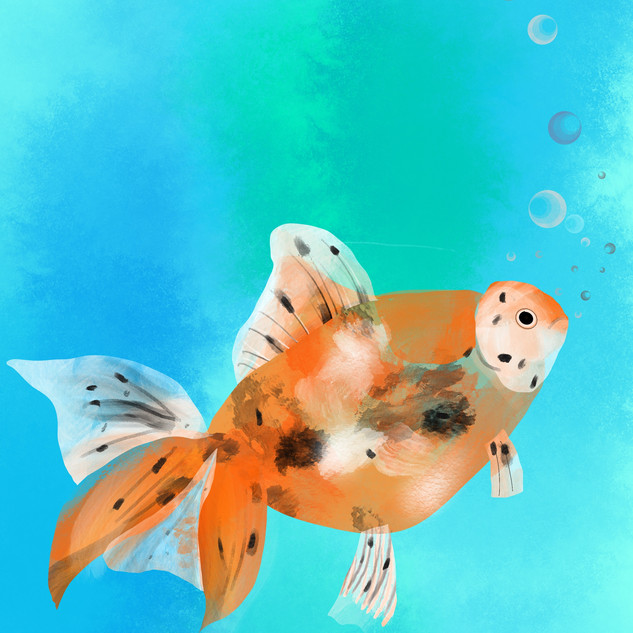 Goldfish A3 print on superior matte paper. £25 Printing options available.