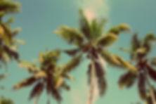 Venez profiter de l'été avec ESCAPADE