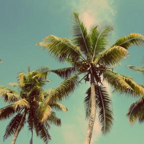 ハワイ再開に向けて一歩前進!