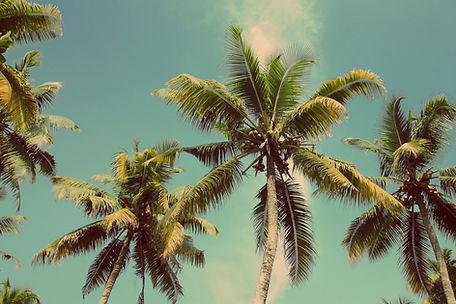las palmas assisted living