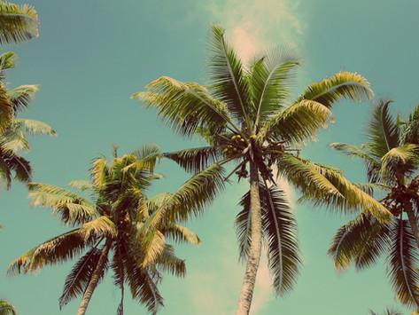 Aloha Grafic fait peau neuve