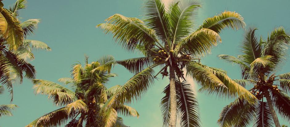 L'enfant et les vacances au soleil   : vigilance et précautions !