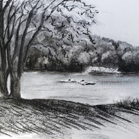 Along the Potomac
