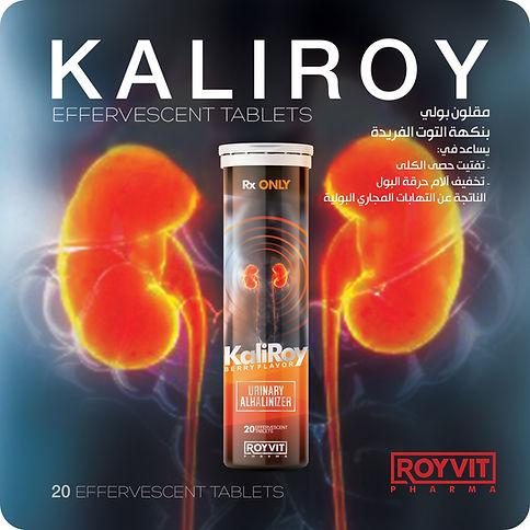 catalogue ROYVIT - KaliRoy tablet 1.jpg