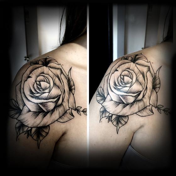 Rose on Ryan 18'