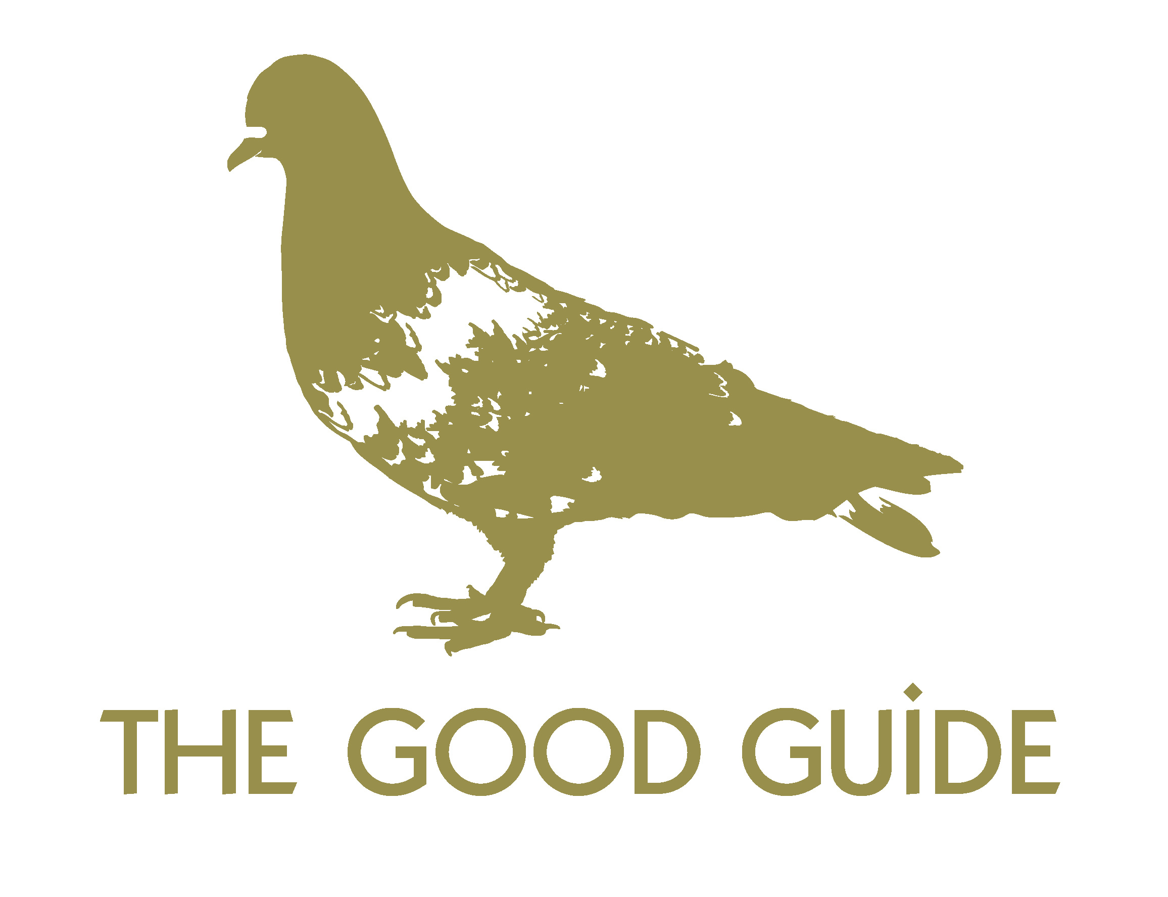The Good Guide