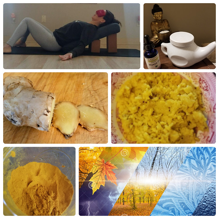 Ayurvedic Cleanse to Transition to Fall