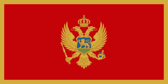 tradução Sérvo