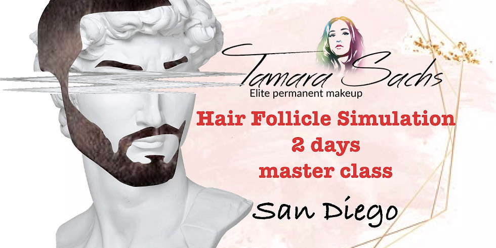 Hair follicle simulation 2 days master class with Tamara Sachs