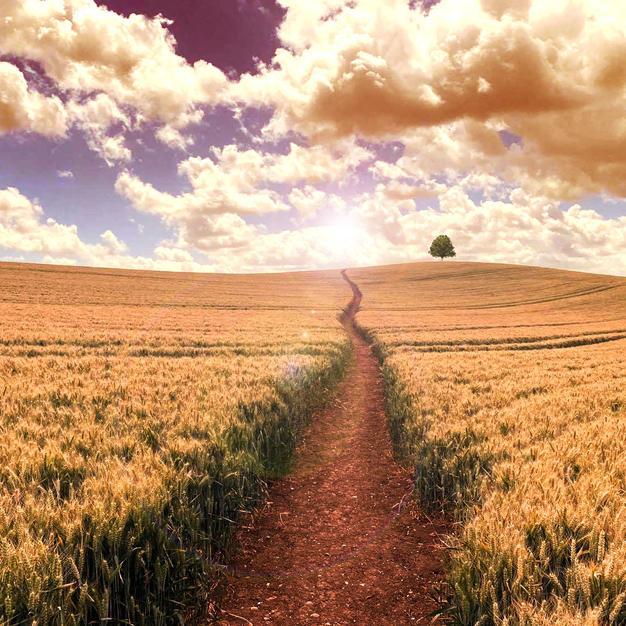 'A long way home'