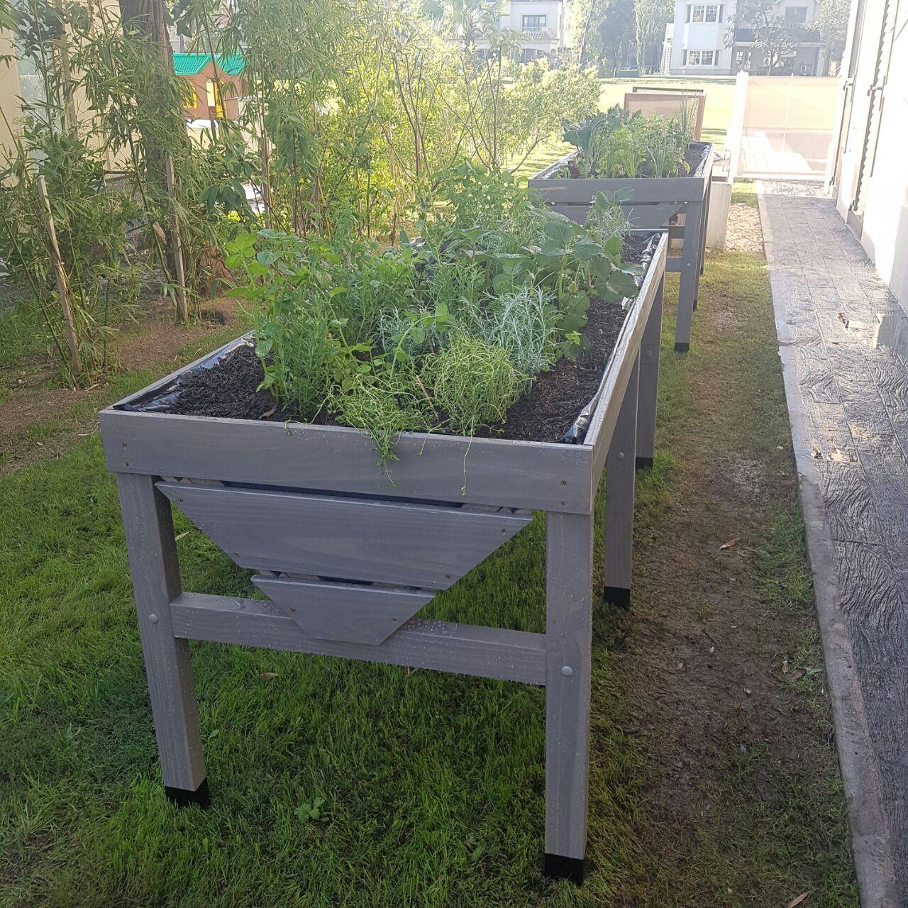 Urban Farm Huertas 4