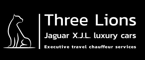 Executive travel cars.Business class pro