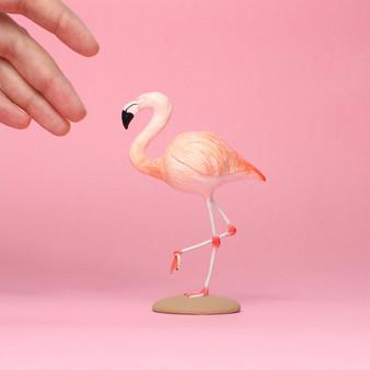 Cakes & Flamingos