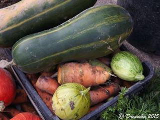 Bossée - Les légumes magiques d'Agnès Robineau
