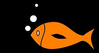 fish-311720_1280.png