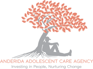 ANDERIDA ADOLESCENT CARE AGENCY.png