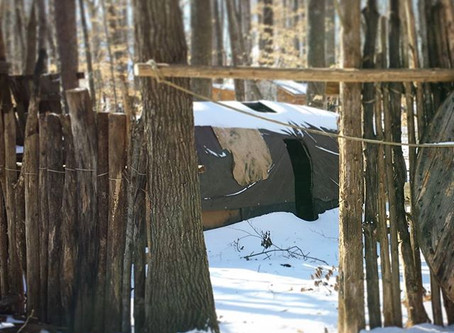 How to build a Fort In The Woods