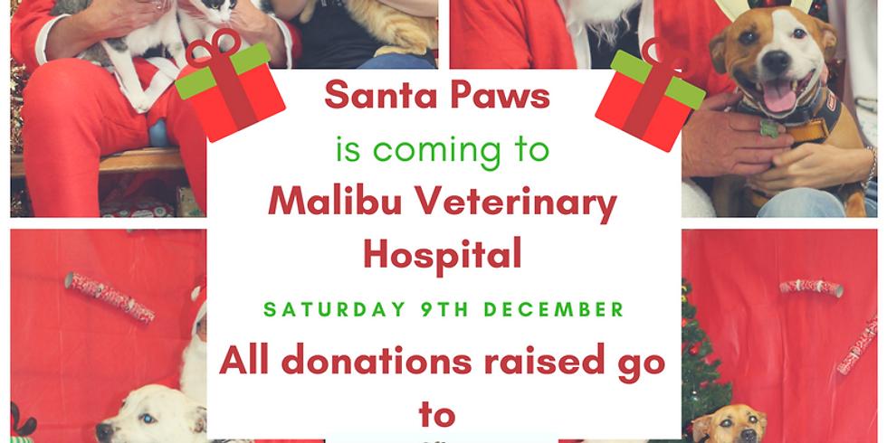 Santa Paws is coming to Malibu Vets