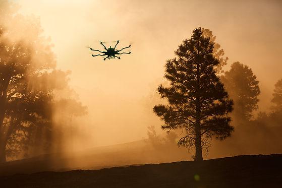 127A0160(DroneInsert).jpg