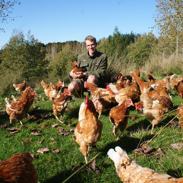 James and his hens