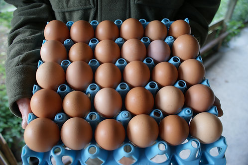 30 Mixed Free Range Eggs