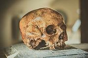 skull-2726131_640.jpg