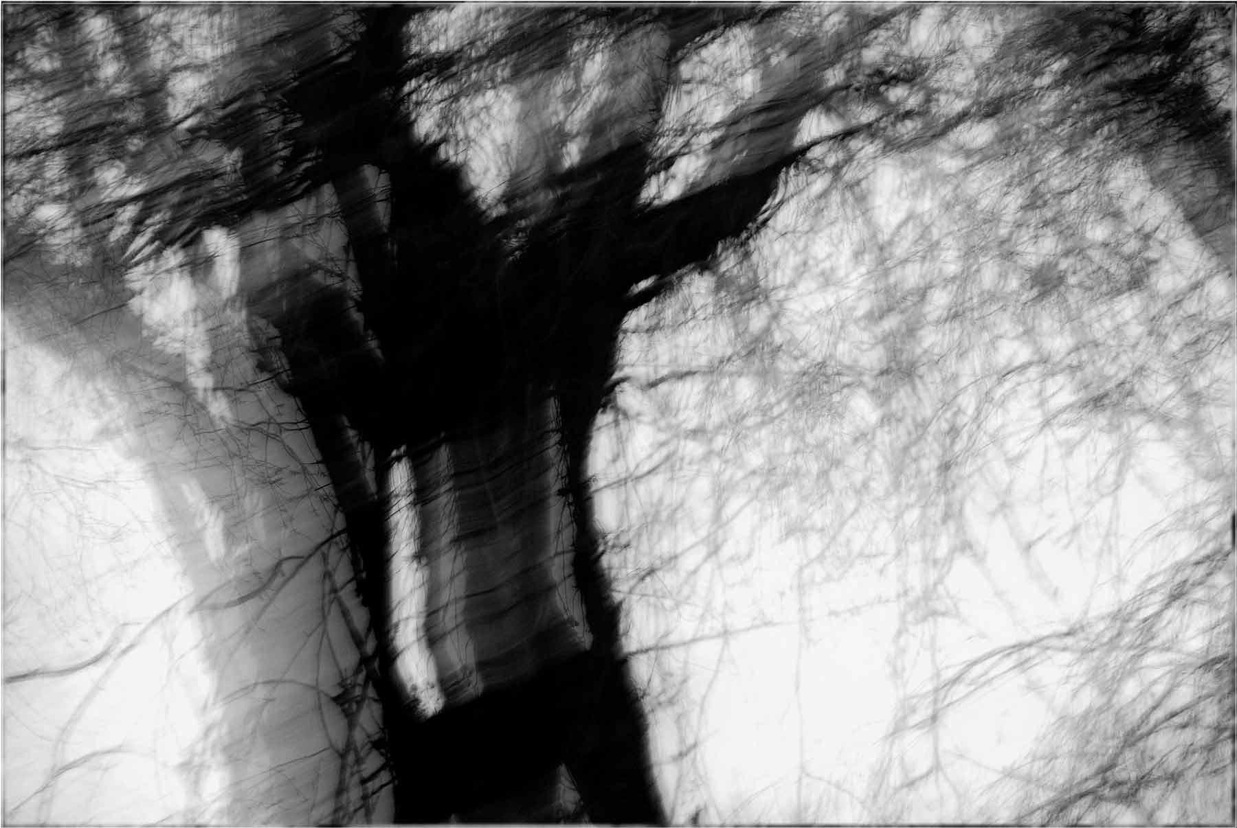 © Gilles Bourgeade