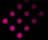 roadskip_logo_black2.png